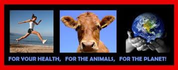 Veganisme – for dyrenes rettigheter